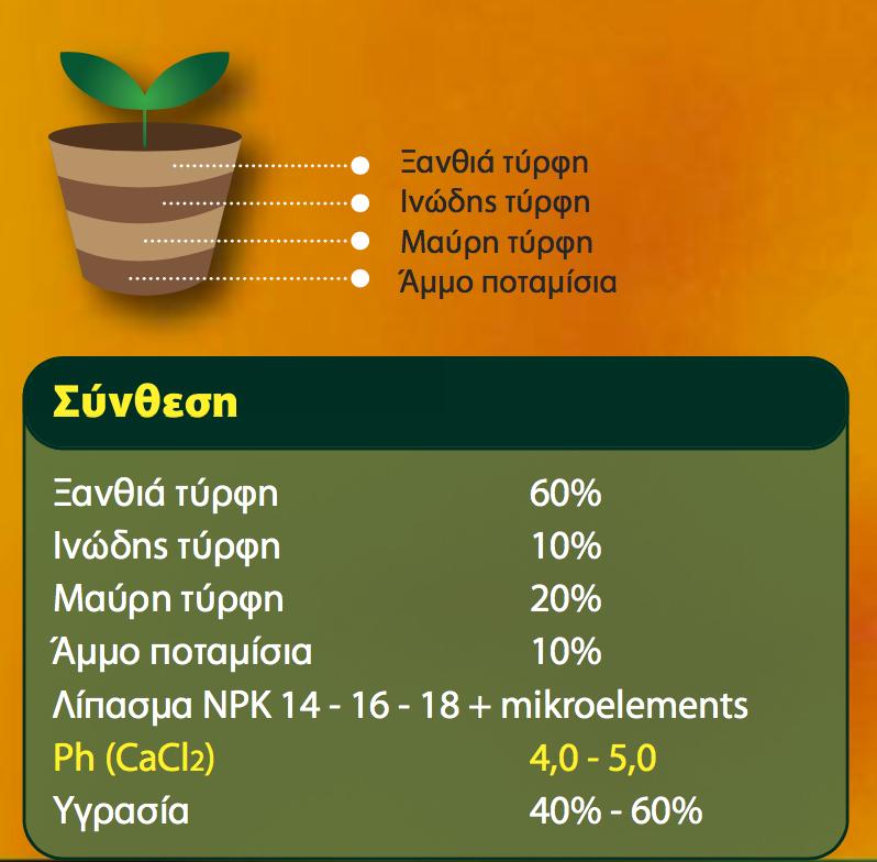 Gardenia ανάλυση