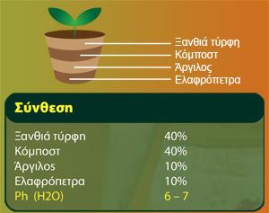 Giardini ανάλυση